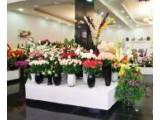 Логотип Artificial Flowers, салон искусственных цветов и деревьев